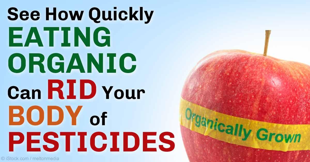 Levels Of Organic Food