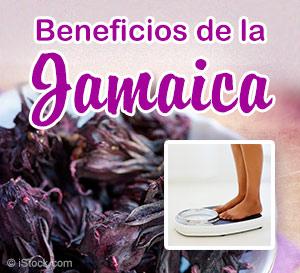 beneficios del te de jamaica
