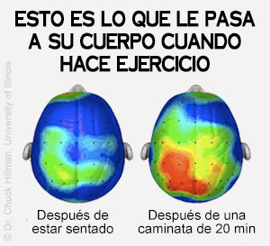 los beneficios de salud del ejercicio
