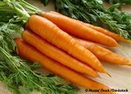 ¿Cuáles Son los Beneficios de las Zanahorias Para la Salud?