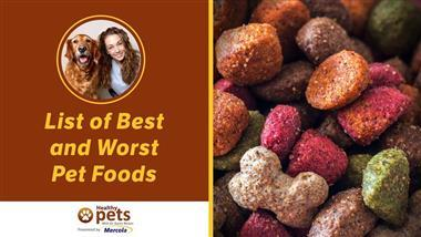 From Best to Worst - My NEW Rankings of 13 Pet Foods