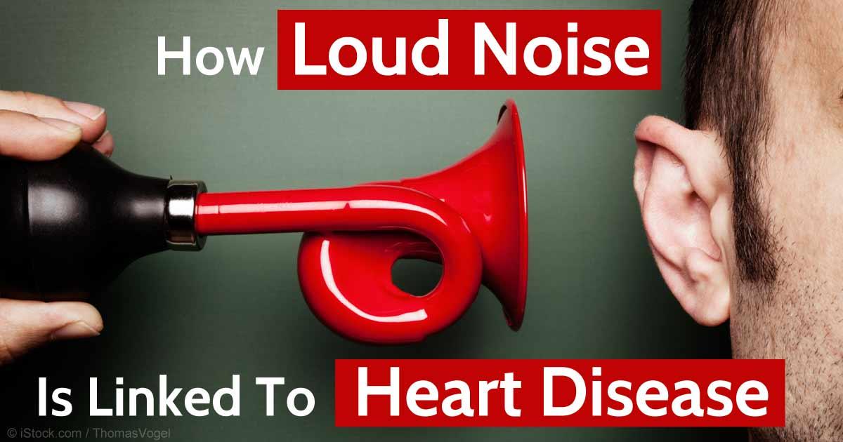 Image result for heart vs noises