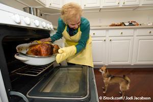 Comida Para el Día de Acción de Gracias