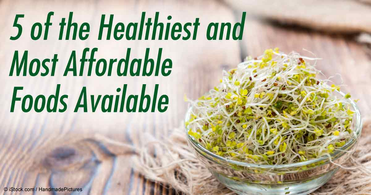 5 of the Healthiest and Most Affordable Foods Available