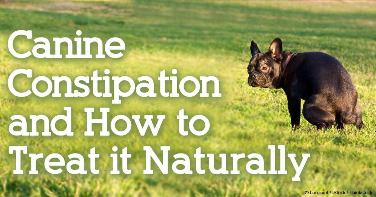 How To Treat Constipation Naturally