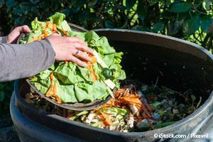 Compost Food Waste