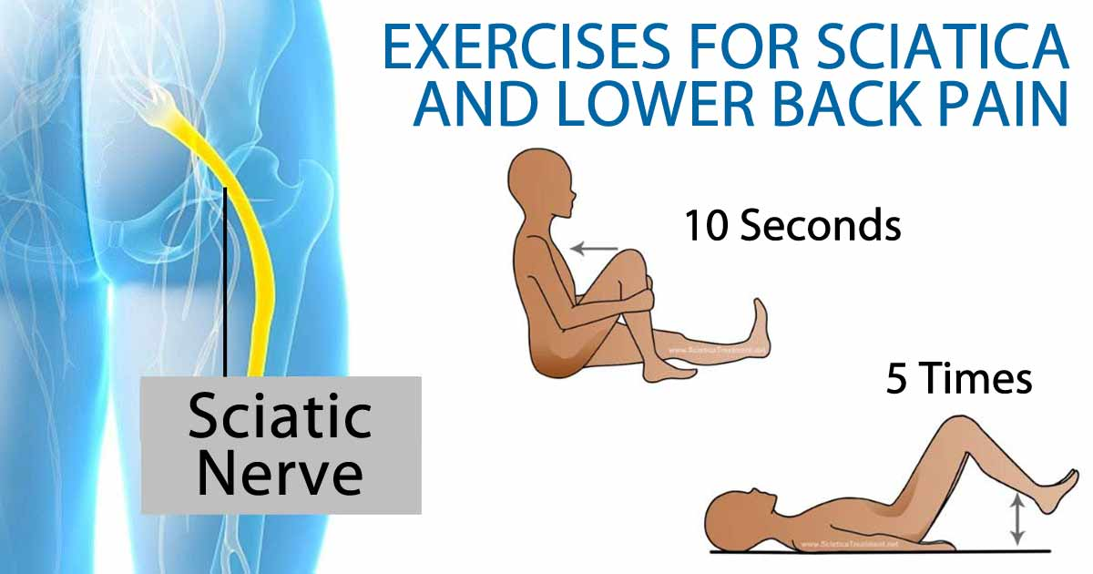 exercises for sciatica and lower back pain, Skeleton