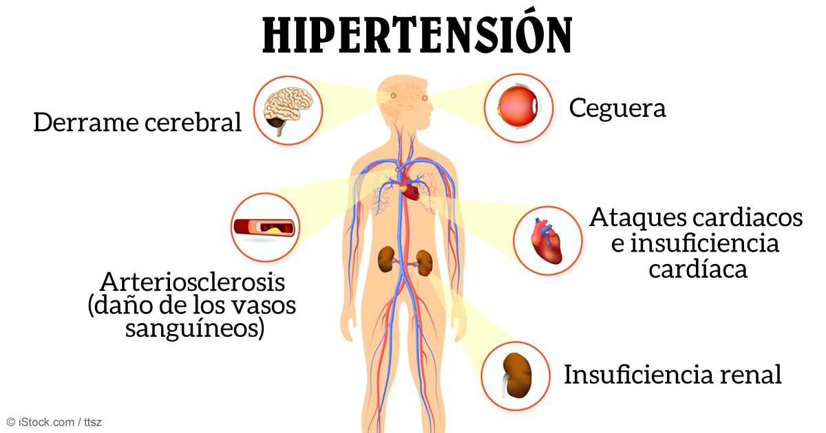 me acabo de cambiar de casa del bohemias - Página 2 Hipertension-effects-body-fb