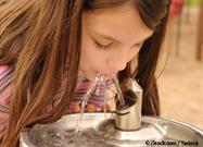 What Diseases Can You Catch from a Water Fountain?