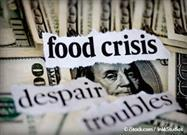 Is There Really a Problem with Food Shortages in the US?