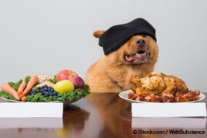 Mascotas Vegetarianas