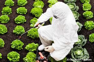 Pesticidas en los Alimentos