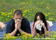 5 Tactics for Surviving the Spring Allergy Season