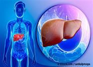 La Obesidad Podría Acelerar el Envejecimiento del Hígado