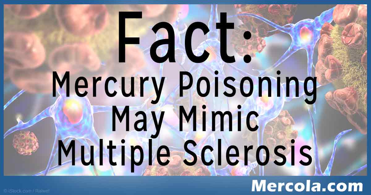 mercury poisoning may mimic multiple sclerosis