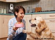 Don't Fall for the 'Grain-Free' Trick Pulled by Some Pet Food Makers