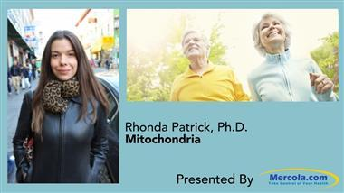 How Your Mitochondria Influence Your Health