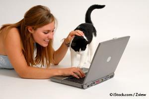 find pets online
