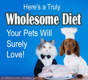 Pet Raw Food Diet