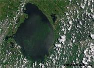 Toxic Algae Takes Over Florida Coastlines