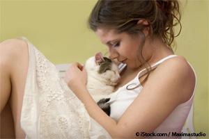 Why You Should Consider Adopting a Senior Cat