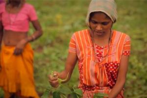 Documentary Investigates Family Farming Practices Around the World