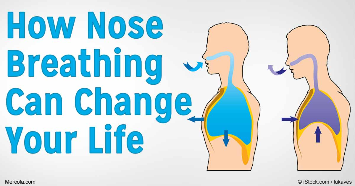 Where Can I Get A Key Copied >> Why Is Nose Breathing Important for Optimal Health and ...
