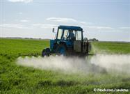 Atrazine — Second Most Common Used Herbicide in U.S.
