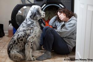 Mascotas Estresadas