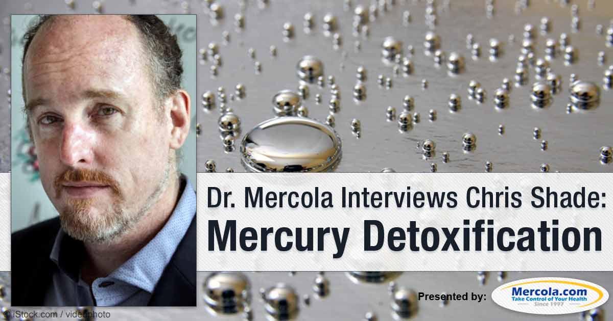 The Three Pillars of Heavy Metal Detoxification