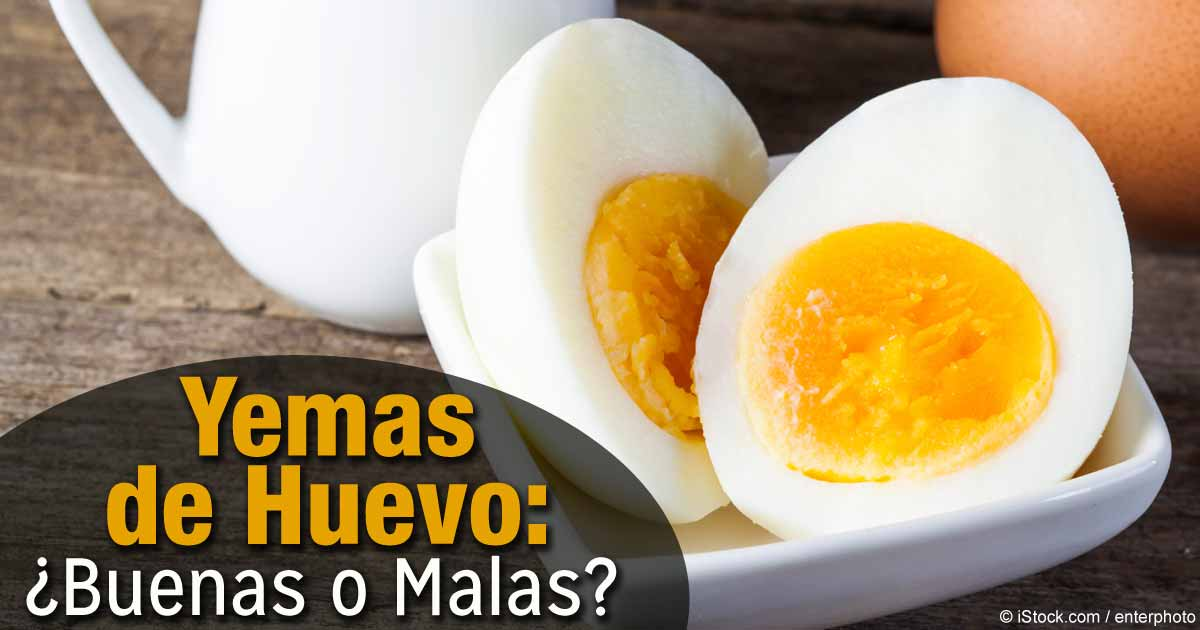 Yemas de huevo buenas o malas for Cocinar yema de huevo