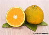 Ugli Fruit Packs in Nutrients