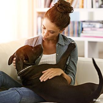 Vinculo Humano-Perro