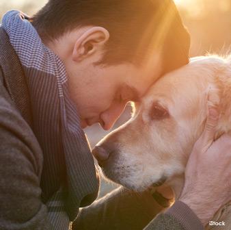 Emociones Caninas