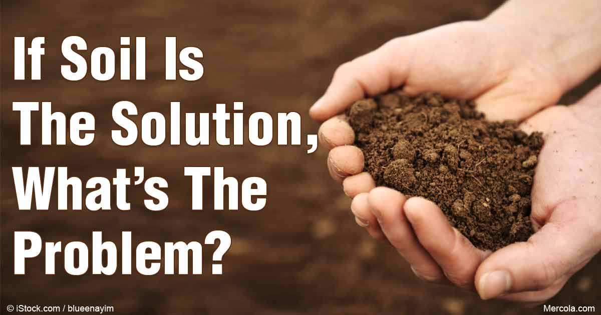 Soil conservation and remediation for Soil articles