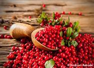 What Are Cranberries Good For?
