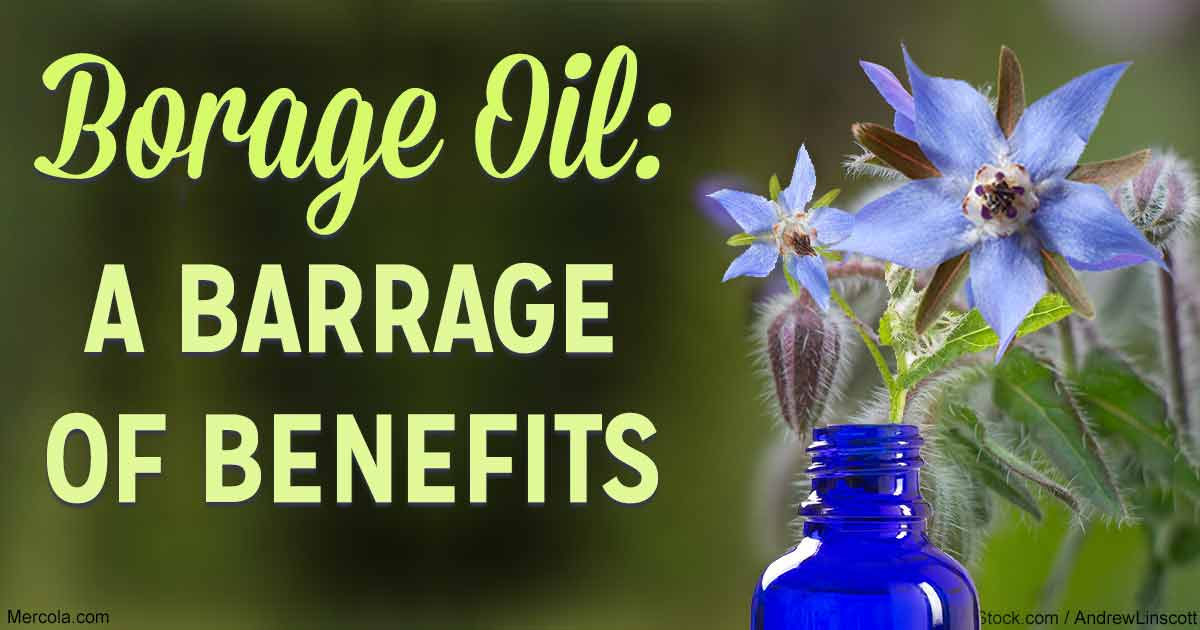 herbal oil: borage oil benefits and uses, Skeleton