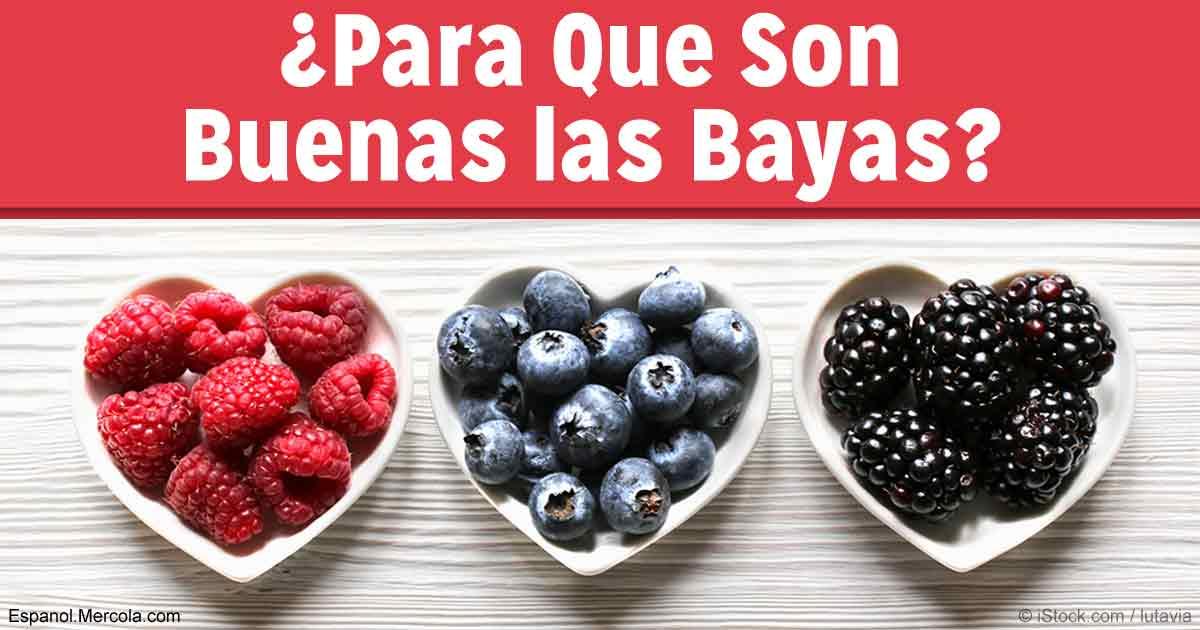 Los Beneficios para la Salud de las Bayas
