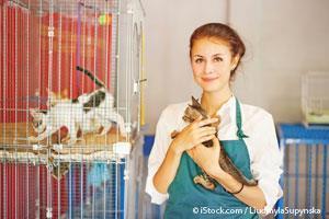 Como Ayudar a los Animales