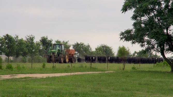 How Regenerative Farming Methods Can Restore Ecology and Rebuild Communities