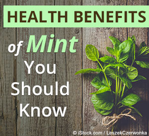 mint health benefits