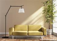 indoor plant in living room