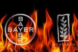 Bayer y Monsanto