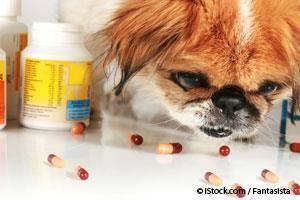Envenenamiento Por Medicamentos