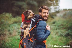 Fortalecer Amistad con Perro