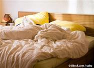 Un Tercio del Peso de Su Almohada Podría Estar Constituido Por Ácaros del Polvo y Heces de Insectos