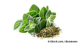 What's so Great About Oregano?