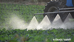 Study Shows Slashing Pesticides Won't Hurt Production