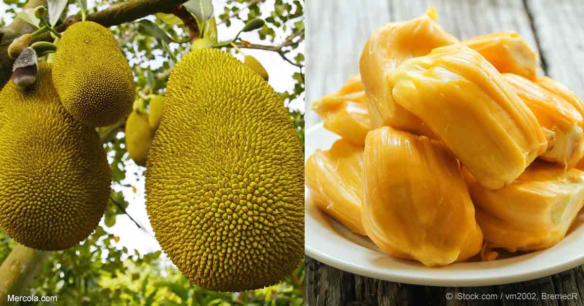 what are the benefits of jackfruit?, Beautiful flower