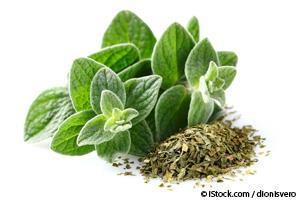 oregano benefits